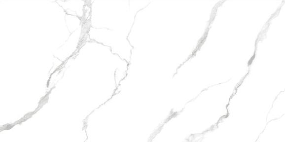 Calacatta Medium