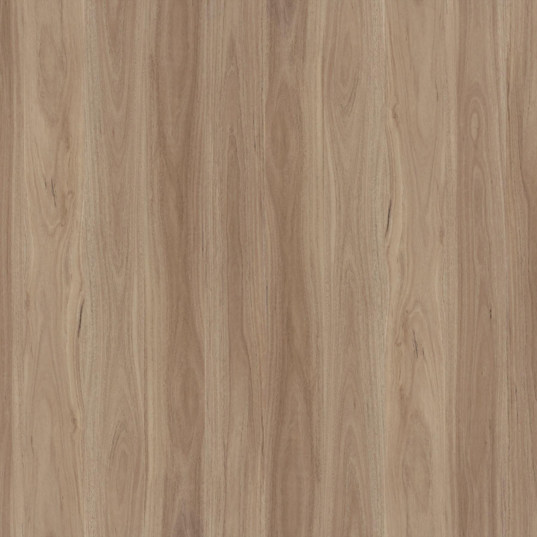 Topdeck Avala Hybrid Flooring Blackbutt - The Flooring Guys