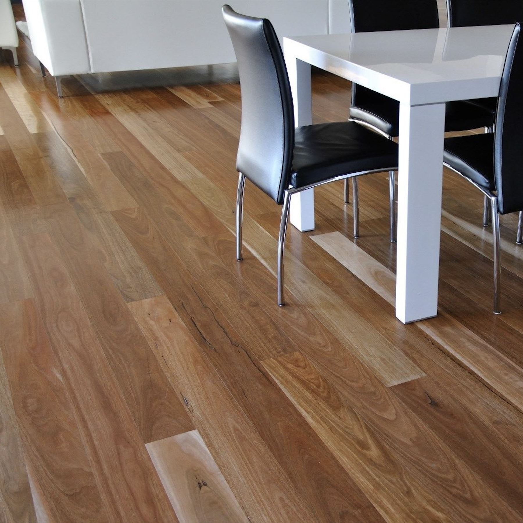 Spotted Gum Eco丨Smooth Semi Gloss